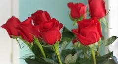 """Описание цветка """"Роза"""" для детей"""