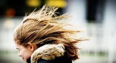Что такое ветер? Описание для детей 2 класса по Окружающему миру