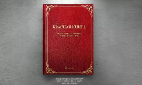 """Что такое """"Красная книга""""? (описание для детей)"""